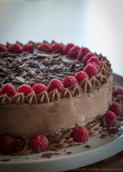 Chocolate Raspberry Cake-1